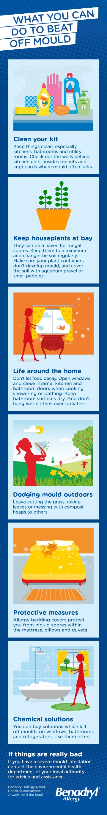 Mould Infographic